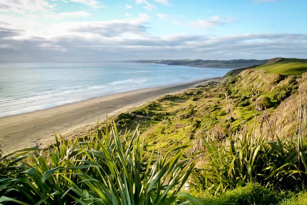 Raglan Surf Beach North Island New Zealand