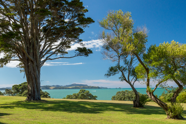 Looking over the Bay of Islands, New Zealand